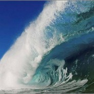 Waves of Hawaii – by Clark Little